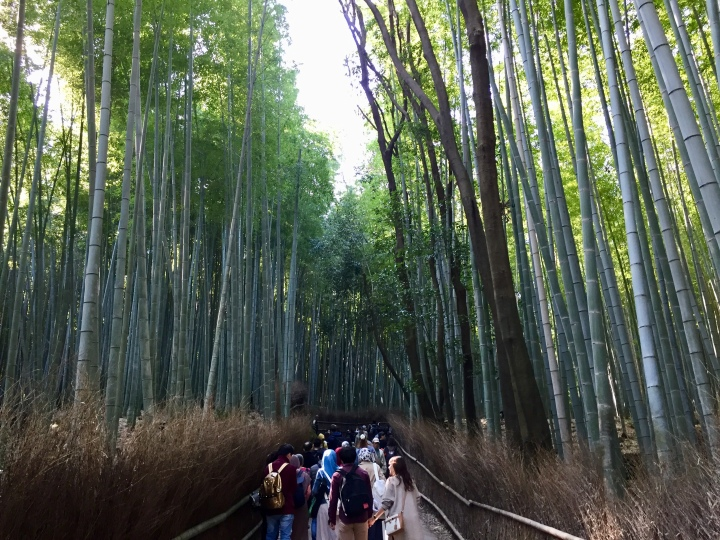 A jaunt in Japan: Kyoto and Osaka