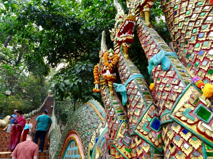 Temples, night markets, and fights in Chiang Mai