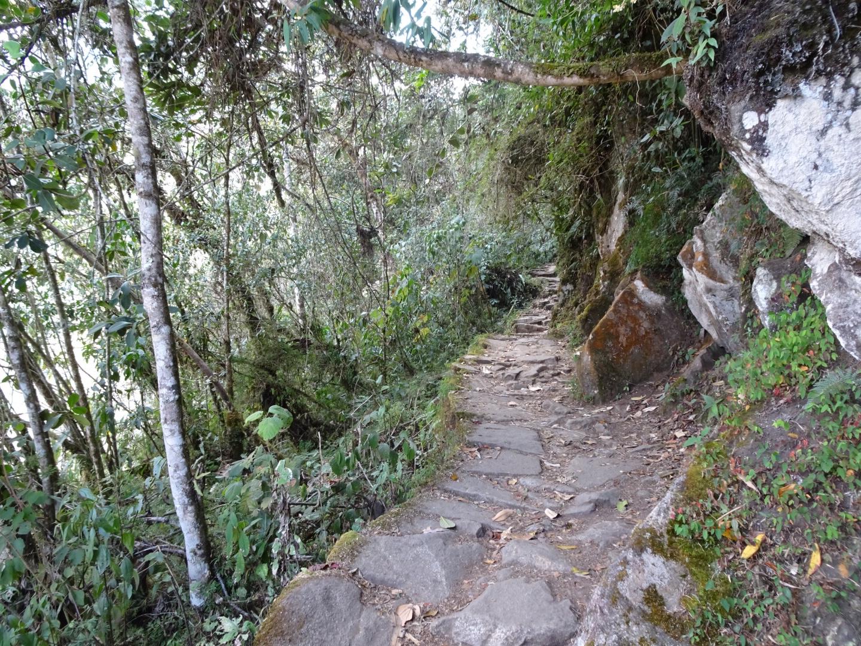 Inca Trail Machu Picchu