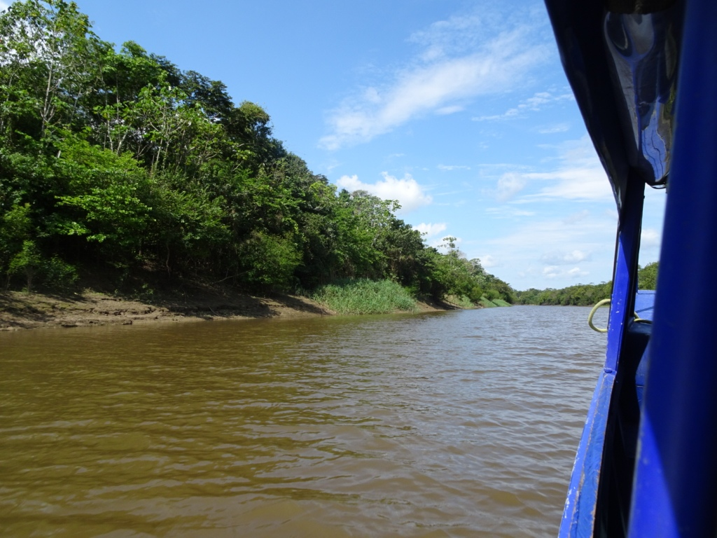 Tahuayo River Amazonia Expeditions Peru